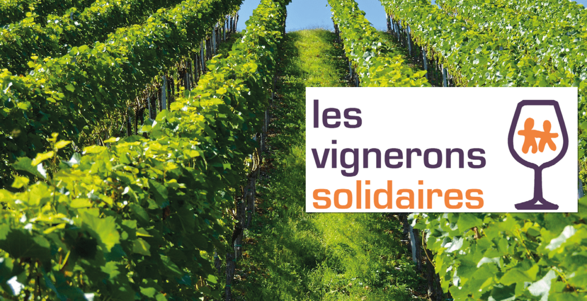 Vignerons Solidaires Vaucluse V2