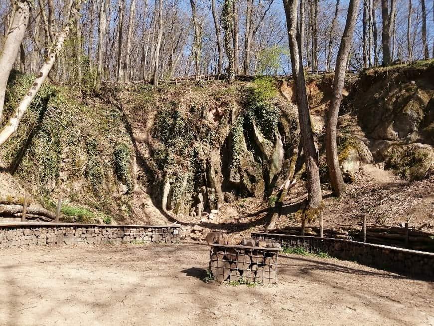 Balades Bois de Serres